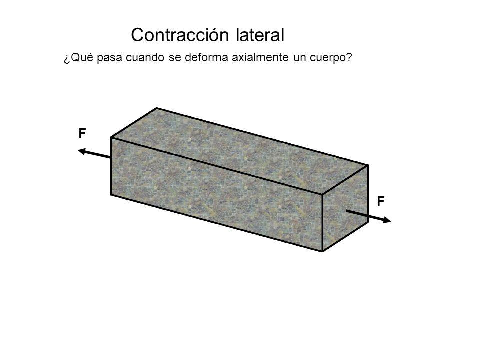 Contracción lateral ¿Qué pasa cuando se deforma axialmente un cuerpo? F F