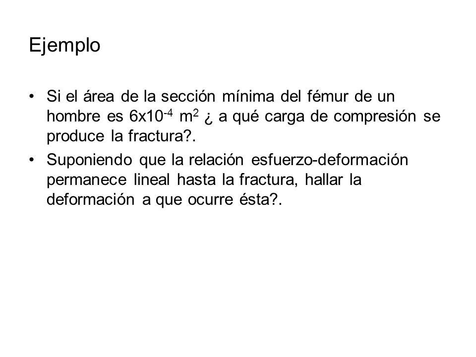 Ejemplo Si el área de la sección mínima del fémur de un hombre es 6x10 -4 m 2 ¿ a qué carga de compresión se produce la fractura?. Suponiendo que la r