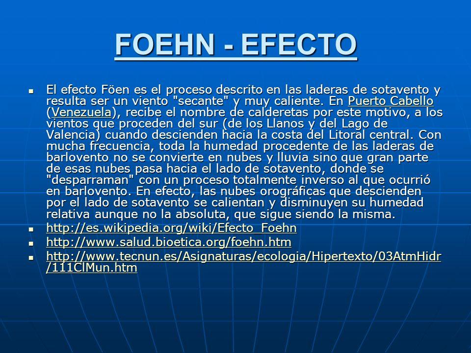 FOEHN - EFECTO El efecto Föen es el proceso descrito en las laderas de sotavento y resulta ser un viento secante y muy caliente.