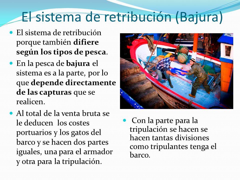 El sistema de retribución (Bajura) El sistema de retribución porque también difiere según los tipos de pesca. En la pesca de bajura el sistema es a la