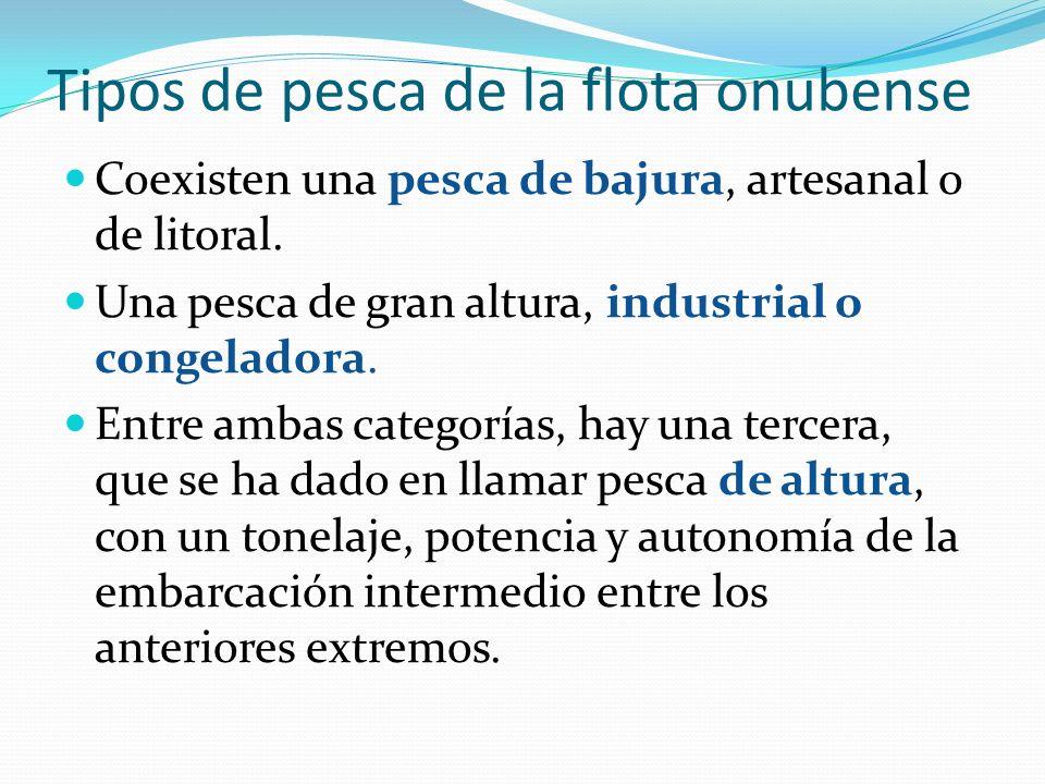 Industria conservera pesquera de Huelva Sociedad Anónima Pesquera En Huelva se constituirá la Sociedad Anónima Pesquera en 1910, propietaria del vapor tarrafa la Higuerita e impulsora de una fábrica de salazones y conservas en Punta Arenilla.