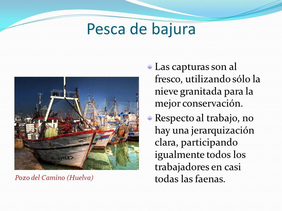 Pesca de altura Características intermedias entre la bajura y la congeladora.