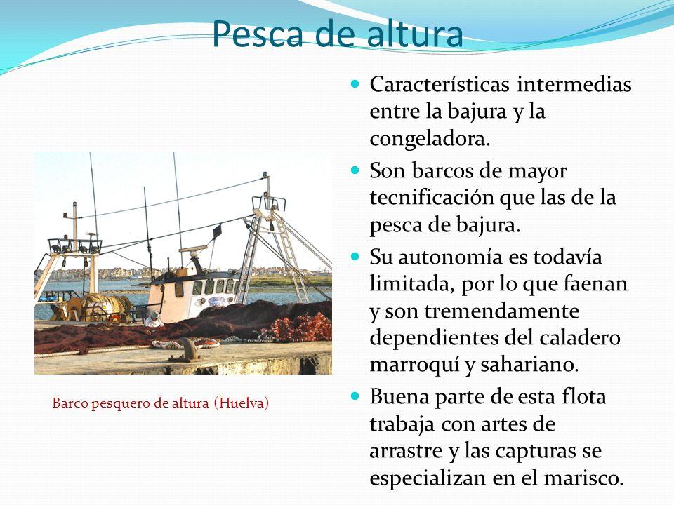 Pesca de altura Características intermedias entre la bajura y la congeladora. Son barcos de mayor tecnificación que las de la pesca de bajura. Su auto