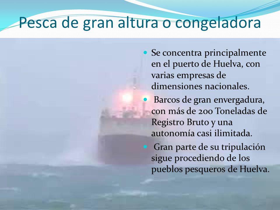 Pesca de gran altura o congeladora Se concentra principalmente en el puerto de Huelva, con varias empresas de dimensiones nacionales. Barcos de gran e