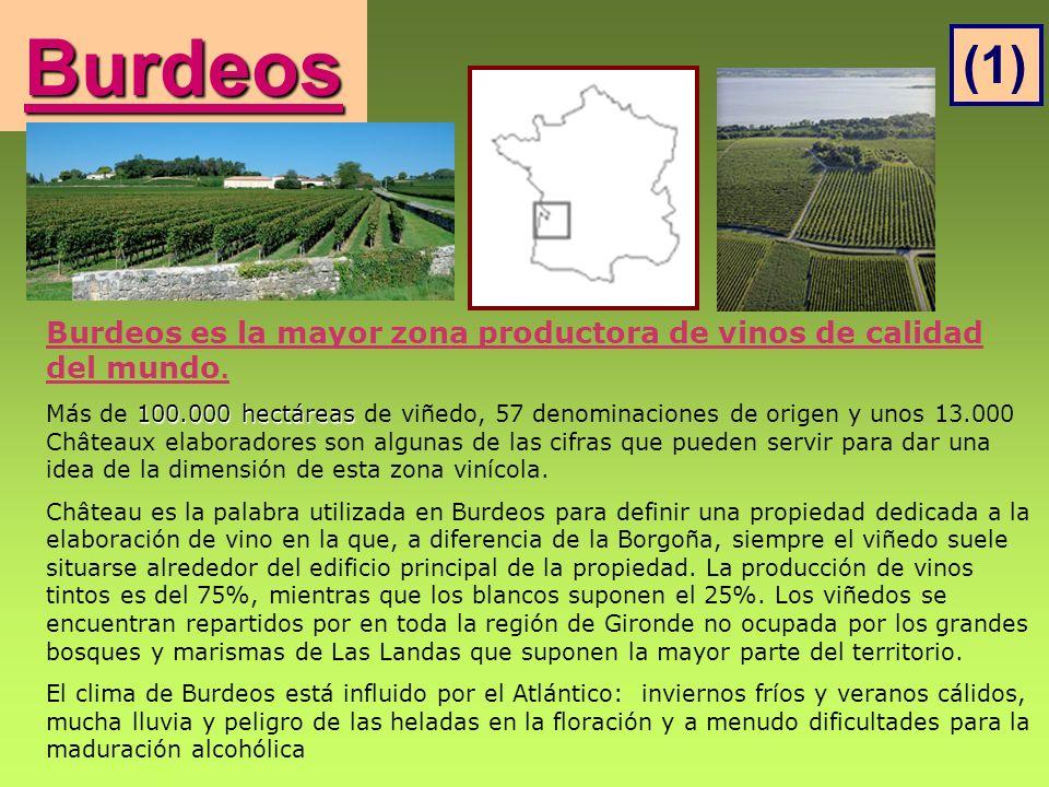 Burdeos Burdeos es la mayor zona productora de vinos de calidad del mundo. 100.000 hectáreas Más de 100.000 hectáreas de viñedo, 57 denominaciones de