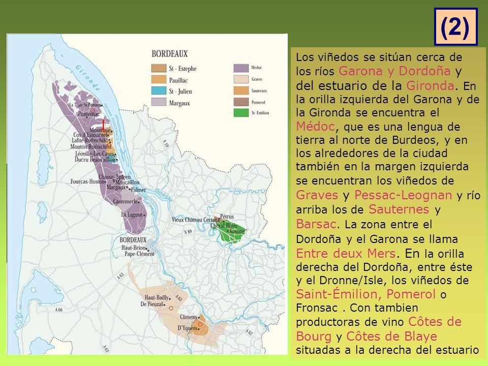 Los viñedos se sitúan cerca de los ríos Garona y Dordoña y del estuario de la Gironda.