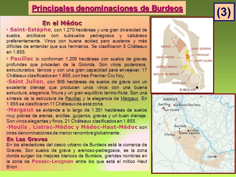 Principales denominaciones de Burdeos En el Médoc En el Médoc Saint-Estèphe, con 1.270 hectáreas y una gran diversidad de suelos, arcillosos con subsuelos pedregosos y calcáreos preferentemente.