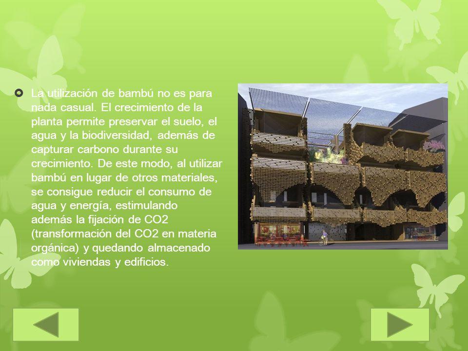 La utilización de bambú no es para nada casual. El crecimiento de la planta permite preservar el suelo, el agua y la biodiversidad, además de capturar