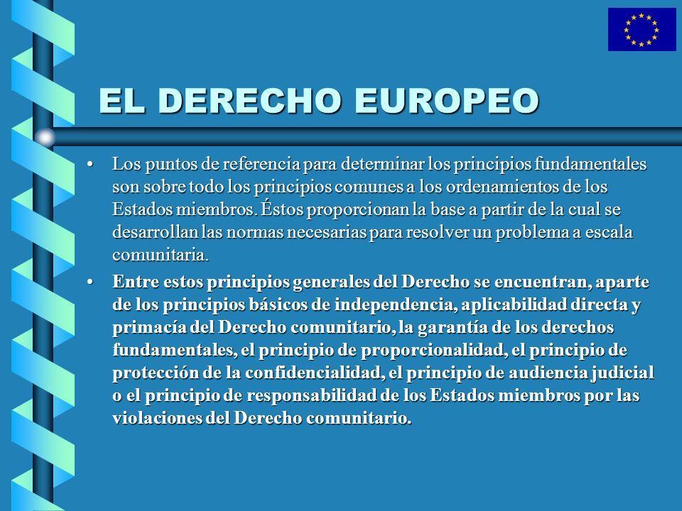 EL DERECHO EUROPEO Los puntos de referencia para determinar los principios fundamentales son sobre todo los principios comunes a los ordenamientos de