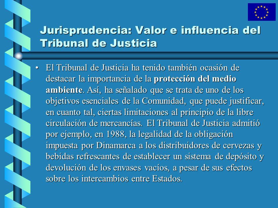 El Tribunal de Justicia ha tenido también ocasión de destacar la importancia de la protección del medio ambiente. Así, ha señalado que se trata de uno