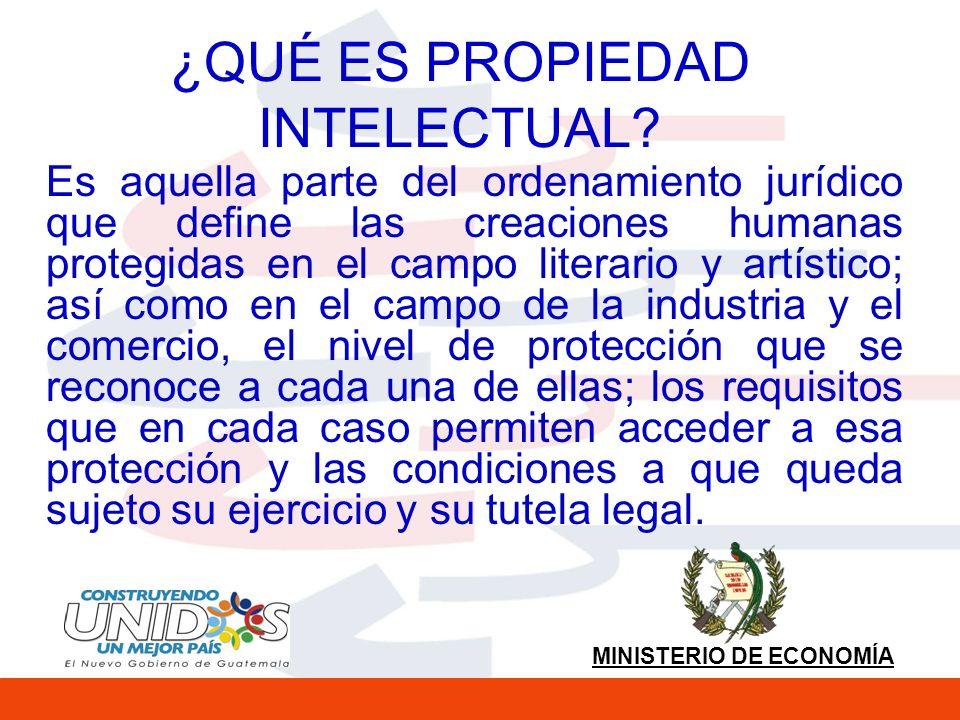 MINISTERIO DE ECONOMÍA COBERTURA DE LA PROPIEDAD INTELECTUAL La Propiedad Intelectual se clasifica en dos grandes ramas: el derecho de autor y la propiedad industrial.