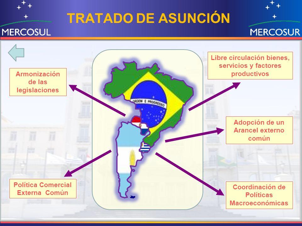 TRATADO DE ASUNCIÓN Libre circulación bienes, servicios y factores productivos Política Comercial Externa Común Adopción de un Arancel externo común A