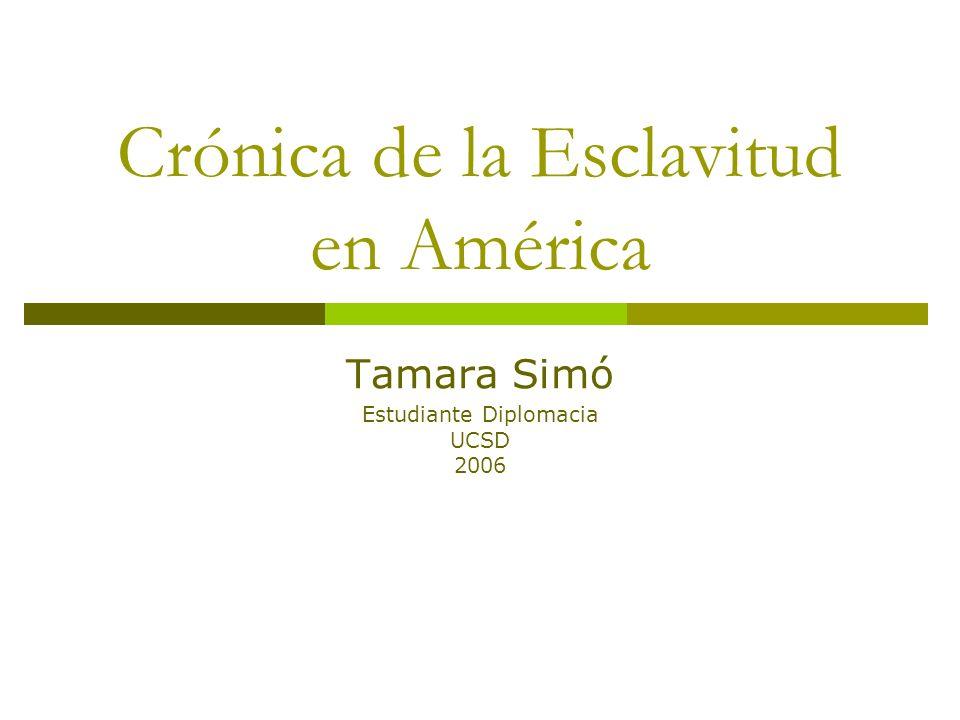 Crónica de la Esclavitud en América Tamara Simó Estudiante Diplomacia UCSD 2006