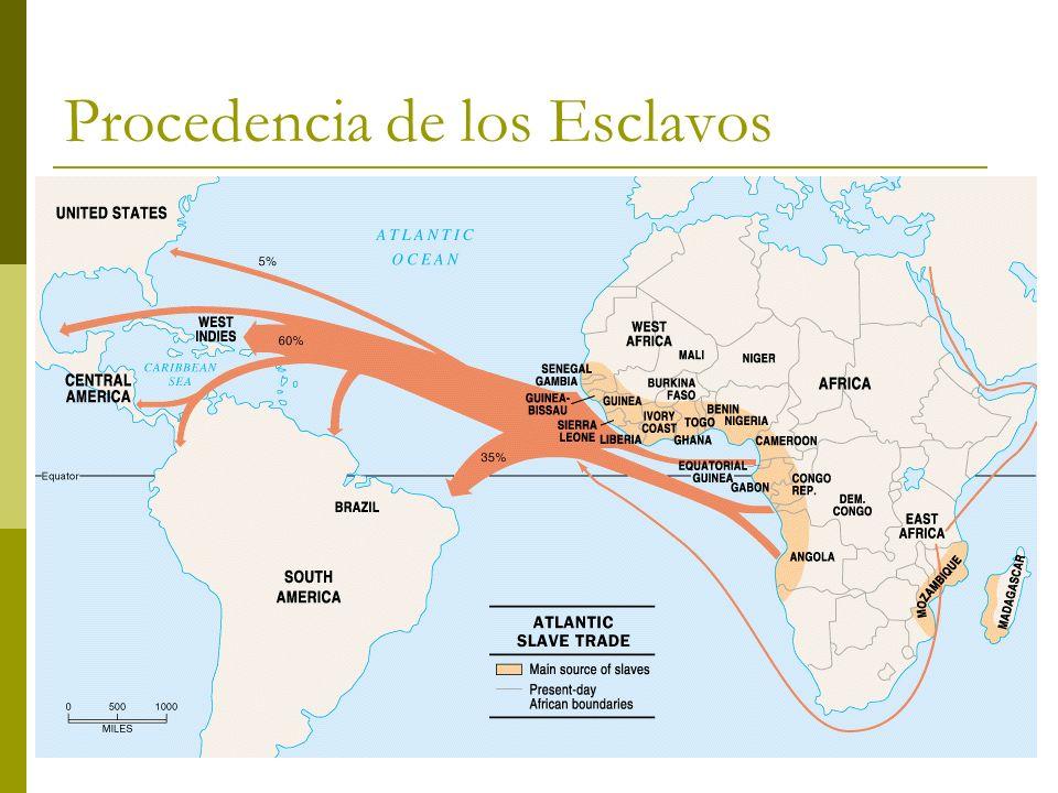 Procedencia de los Esclavos El origen geográfico de los esclavos negros destinados a América es muy variado y cubre la costa occidental africana y la