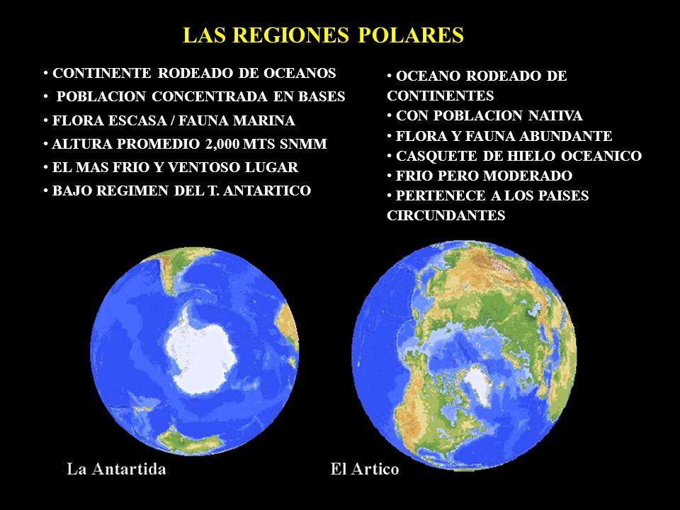 OCEANO RODEADO DE CONTINENTES CON POBLACION NATIVA FLORA Y FAUNA ABUNDANTE CASQUETE DE HIELO OCEANICO FRIO PERO MODERADO PERTENECE A LOS PAISES CIRCUN