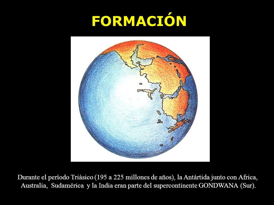 FORMACIÓN Durante el período Triásico (195 a 225 millones de años), la Antártida junto con Africa, Australia, Sudamérica y la India eran parte del sup