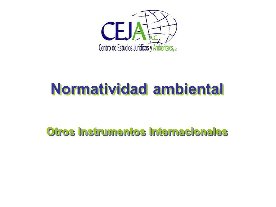 Normatividad ambiental Otros instrumentos internacionales