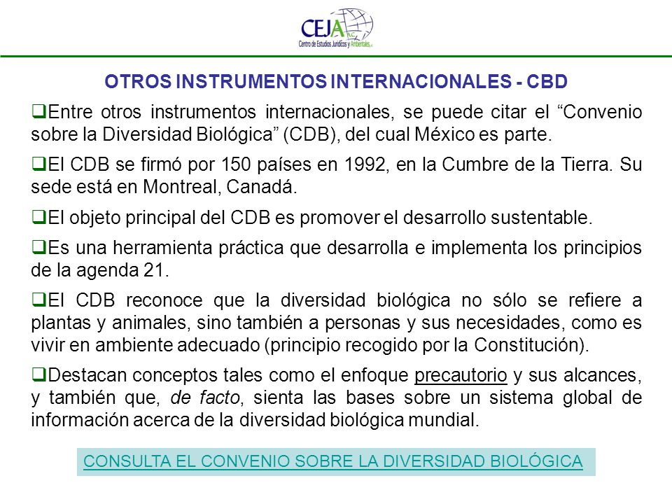 OTROS INSTRUMENTOS INTERNACIONALES - CBD Entre otros instrumentos internacionales, se puede citar el Convenio sobre la Diversidad Biológica (CDB), del