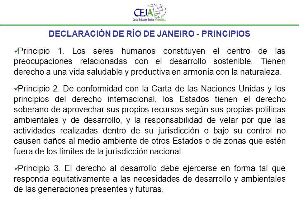 DECLARACIÓN DE RÍO DE JANEIRO - PRINCIPIOS Principio 1. Los seres humanos constituyen el centro de las preocupaciones relacionadas con el desarrollo s