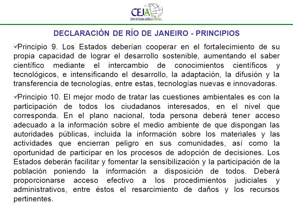 DECLARACIÓN DE RÍO DE JANEIRO – PRINCIPIOS Principio 11.