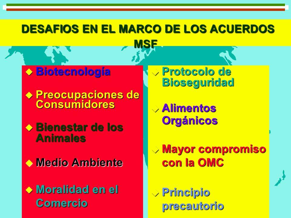DESAFIOS EN EL MARCO DE LOS ACUERDOS MSF DESAFIOS EN EL MARCO DE LOS ACUERDOS MSF u Biotecnología u Preocupaciones de Consumidores u Bienestar de los