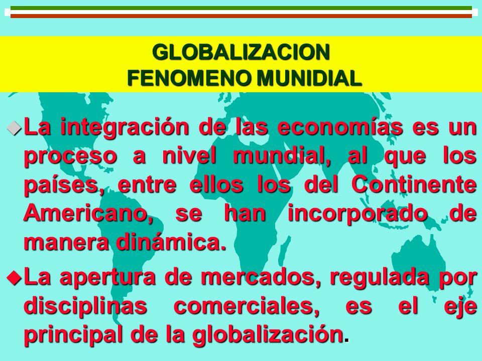 GLOBALIZACION FENOMENO MUNIDIAL u La integración de las economías es un proceso a nivel mundial, al que los países, entre ellos los del Continente Ame