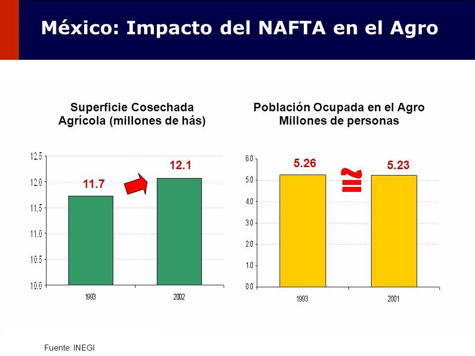 100 Fuente: INEGI Superficie Cosechada Agrícola (millones de hás) 11.7 12.1 Población Ocupada en el Agro Millones de personas 5.26 5.23 México: Impact