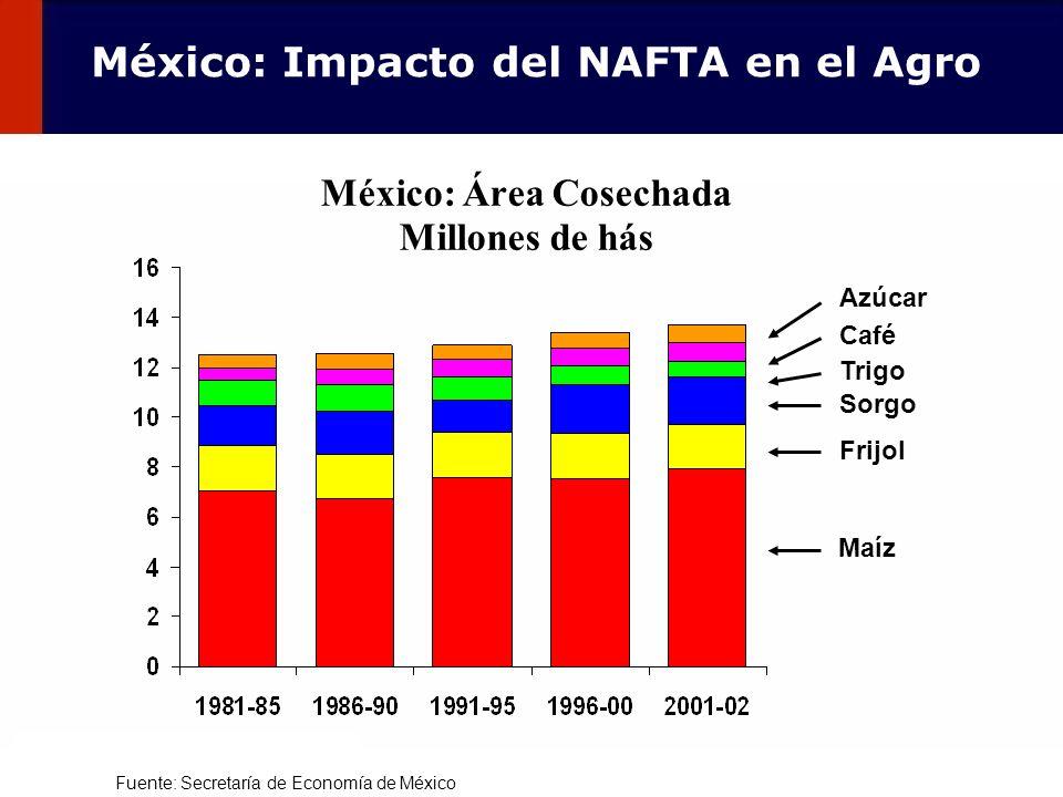 102 México: Área Cosechada Millones de hás Maíz Frijol Trigo Sorgo Café Azúcar Fuente: Secretaría de Economía de México México: Impacto del NAFTA en e