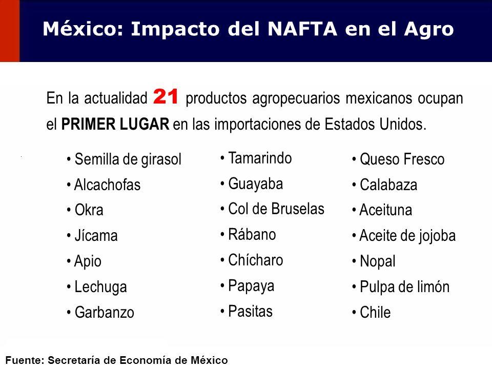 103 En la actualidad 21 productos agropecuarios mexicanos ocupan el PRIMER LUGAR en las importaciones de Estados Unidos. Tamarindo Guayaba Col de Brus