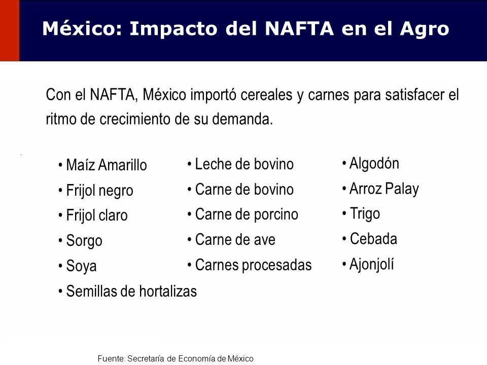 106 Con el NAFTA, México importó cereales y carnes para satisfacer el ritmo de crecimiento de su demanda. Leche de bovino Carne de bovino Carne de por