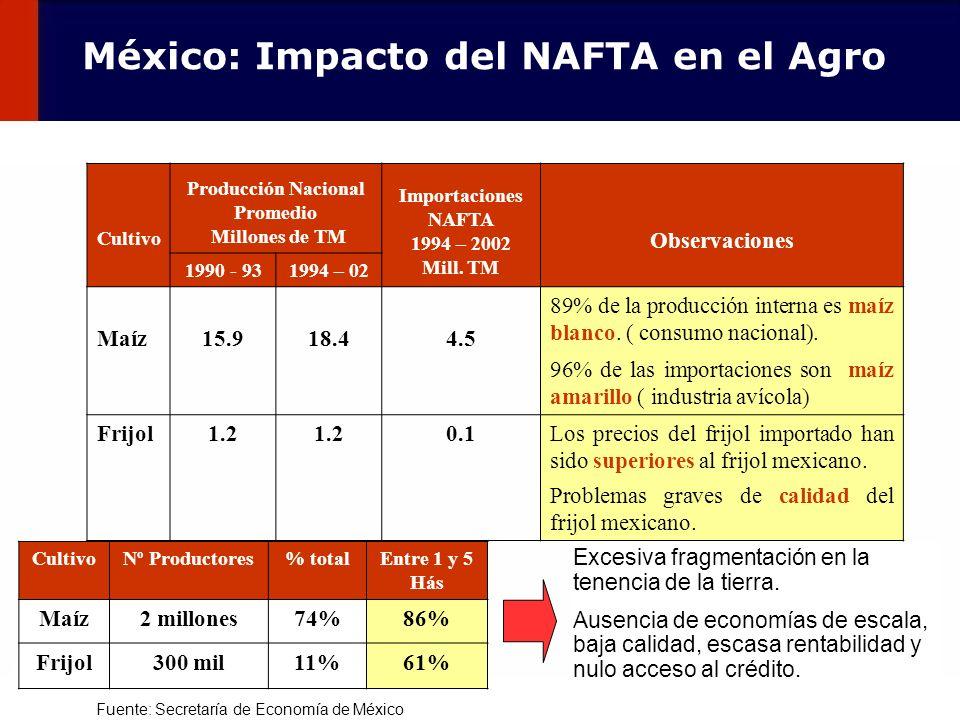 107 Cultivo Producción Nacional Promedio Millones de TM Importaciones NAFTA 1994 – 2002 Mill. TM Observaciones 1990 - 931994 – 02 Maíz15.918.44.5 89%