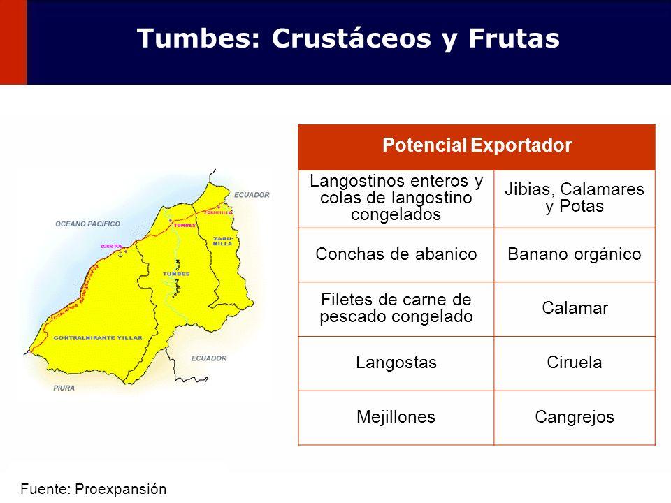 39 Tumbes: Crustáceos y Frutas Potencial Exportador Langostinos enteros y colas de langostino congelados Jibias, Calamares y Potas Conchas de abanicoB