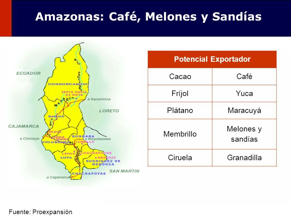 43 Potencial Exportador CacaoCafé FríjolYuca PlátanoMaracuyá Membrillo Melones y sandías CiruelaGranadilla Amazonas: Café, Melones y Sandías Fuente: P