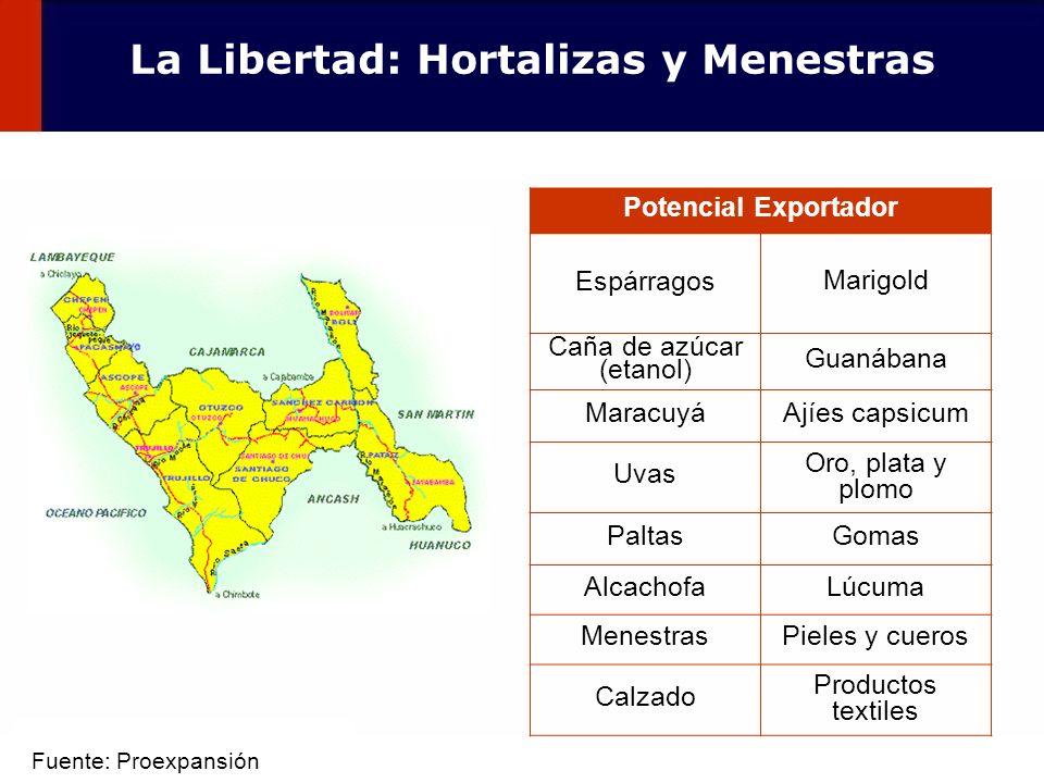 44 Potencial Exportador Espárragos Marigold Caña de azúcar (etanol) Guanábana MaracuyáAjíes capsicum Uvas Oro, plata y plomo PaltasGomas AlcachofaLúcu