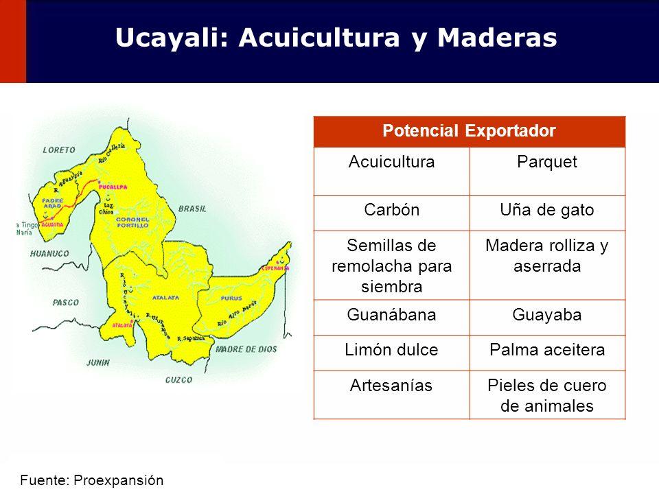 48 Potencial Exportador AcuiculturaParquet CarbónUña de gato Semillas de remolacha para siembra Madera rolliza y aserrada GuanábanaGuayaba Limón dulce