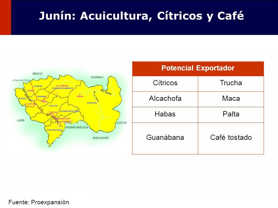 53 Potencial Exportador CítricosTrucha AlcachofaMaca HabasPalta GuanábanaCafé tostado Junín: Acuicultura, Cítricos y Café Fuente: Proexpansión