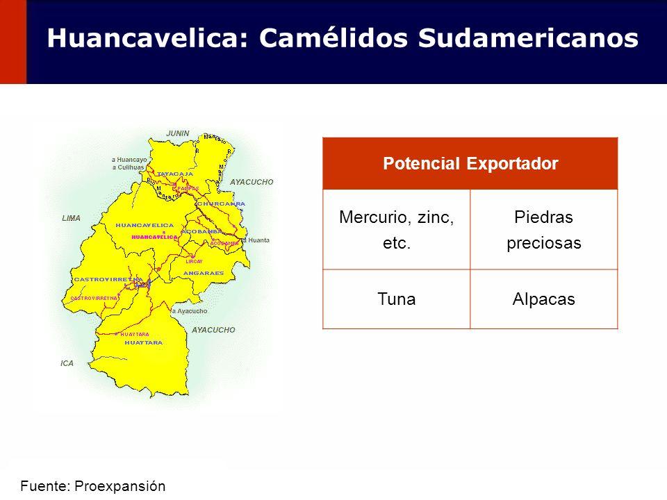 54 Potencial Exportador Mercurio, zinc, etc. Piedras preciosas TunaAlpacas Huancavelica: Camélidos Sudamericanos Fuente: Proexpansión