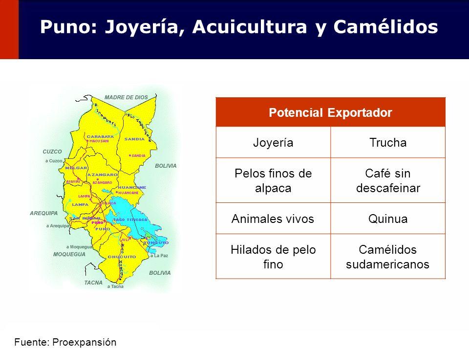 59 Potencial Exportador JoyeríaTrucha Pelos finos de alpaca Café sin descafeinar Animales vivosQuinua Hilados de pelo fino Camélidos sudamericanos Pun