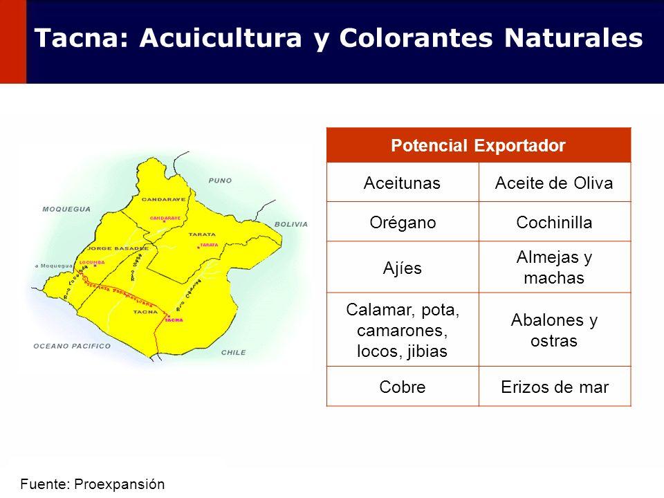 62 Potencial Exportador AceitunasAceite de Oliva OréganoCochinilla Ajíes Almejas y machas Calamar, pota, camarones, locos, jibias Abalones y ostras Co