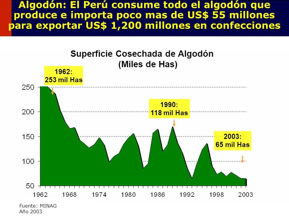 70 Algodón: El Perú consume todo el algodón que produce e importa poco mas de US$ 55 millones para exportar US$ 1,200 millones en confecciones Superfi