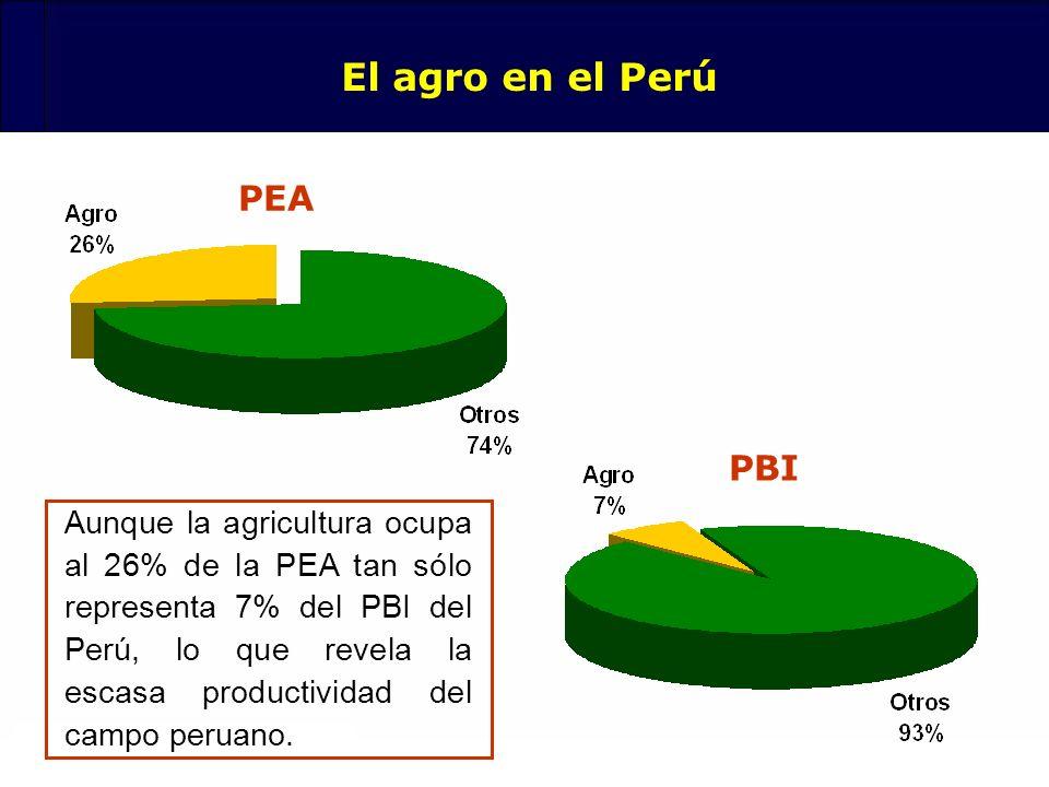 80 El agro en el Perú PEA PBI Aunque la agricultura ocupa al 26% de la PEA tan sólo representa 7% del PBI del Perú, lo que revela la escasa productivi