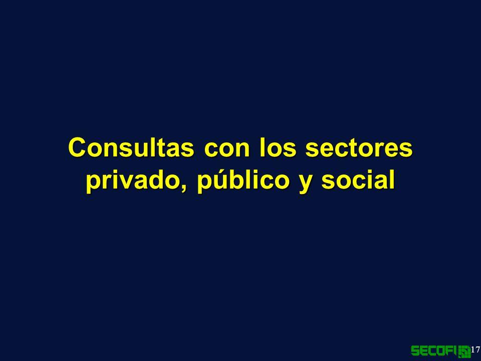 17 Consultas con los sectores privado, público y social