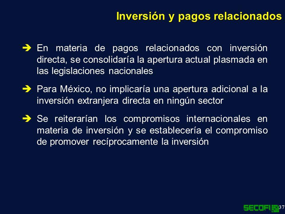 37 En materia de pagos relacionados con inversión directa, se consolidaría la apertura actual plasmada en las legislaciones nacionales Para México, no implicaría una apertura adicional a la inversión extranjera directa en ningún sector Se reiterarían los compromisos internacionales en materia de inversión y se establecería el compromiso de promover recíprocamente la inversión Inversión y pagos relacionados