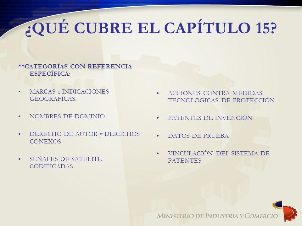 ¿QUÉ CUBRE EL CAPÍTULO 15? **CATEGORÍAS CON REFERENCIA ESPECÍFICA: MARCAS e INDICACIONES GEOGRAFICAS. NOMBRES DE DOMINIO DERECHO DE AUTOR y DERECHOS C