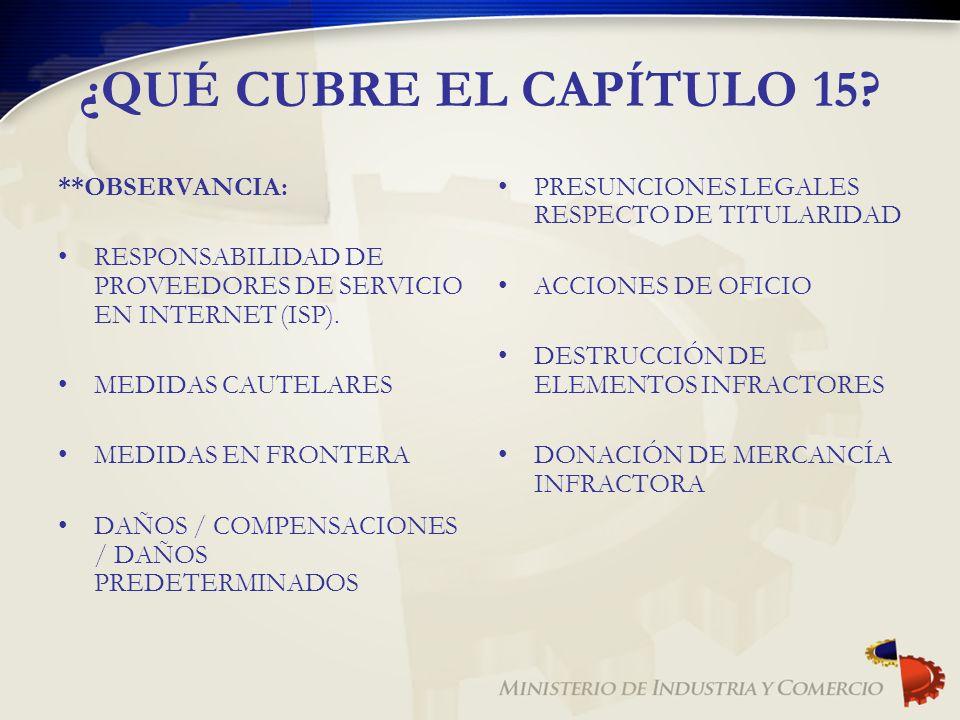 ¿QUÉ CUBRE EL CAPÍTULO 15? **OBSERVANCIA: RESPONSABILIDAD DE PROVEEDORES DE SERVICIO EN INTERNET (ISP). MEDIDAS CAUTELARES MEDIDAS EN FRONTERA DAÑOS /
