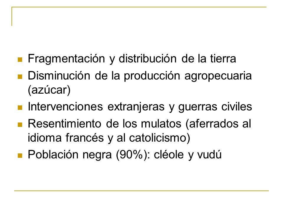 Fragmentación y distribución de la tierra Disminución de la producción agropecuaria (azúcar) Intervenciones extranjeras y guerras civiles Resentimient