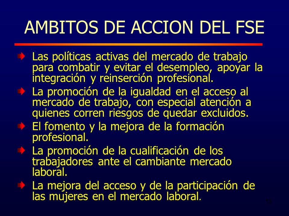 13 AMBITOS DE ACCION DEL FSE Las políticas activas del mercado de trabajo para combatir y evitar el desempleo, apoyar la integración y reinserción profesional.