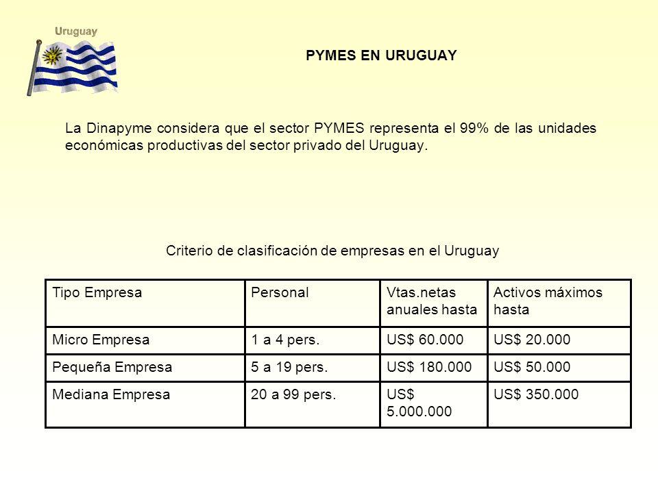 PYMES EN URUGUAY La Dinapyme considera que el sector PYMES representa el 99% de las unidades económicas productivas del sector privado del Uruguay.
