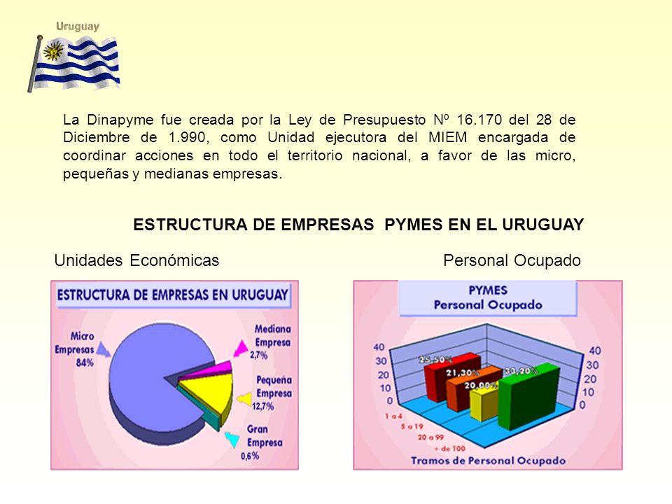 La Dinapyme fue creada por la Ley de Presupuesto Nº 16.170 del 28 de Diciembre de 1.990, como Unidad ejecutora del MIEM encargada de coordinar acciones en todo el territorio nacional, a favor de las micro, pequeñas y medianas empresas.