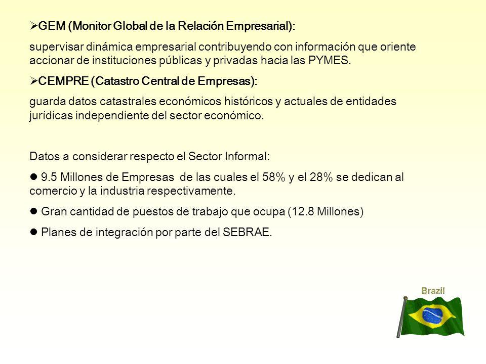 GEM (Monitor Global de la Relación Empresarial): supervisar dinámica empresarial contribuyendo con información que oriente accionar de instituciones públicas y privadas hacia las PYMES.